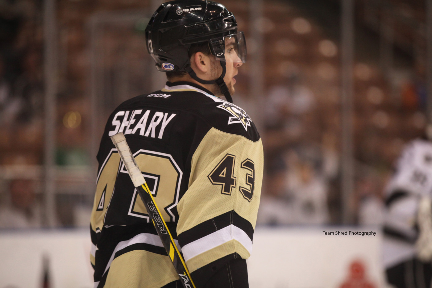 Conor-Sheary2