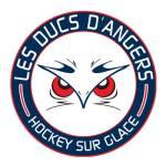 Ducs_dAngers