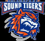 Bridgeport_Sound_Tigers