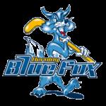herning_blue_fox
