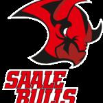 Saale_Bulls_Halle