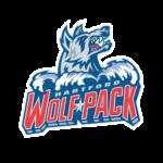 hartford_wolfpack