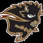Manitoba_Bisons